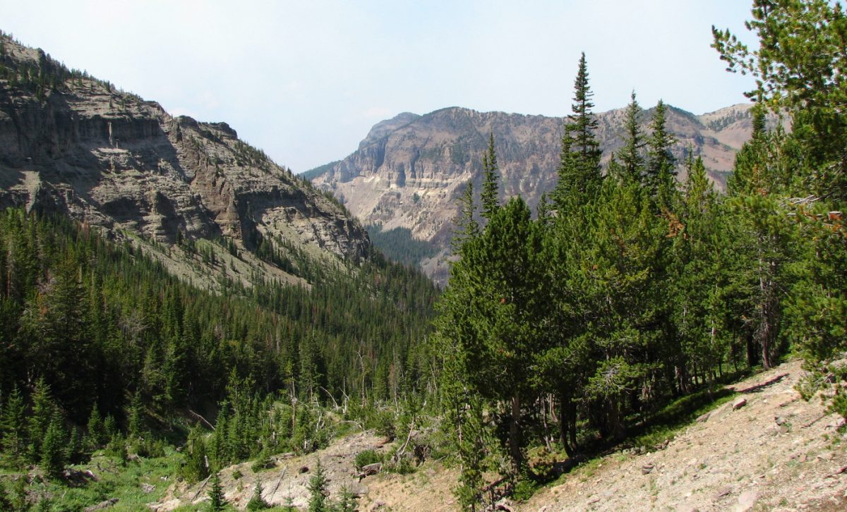 View from the Crow Mountain Trail in the Custer Gallatin National Forest