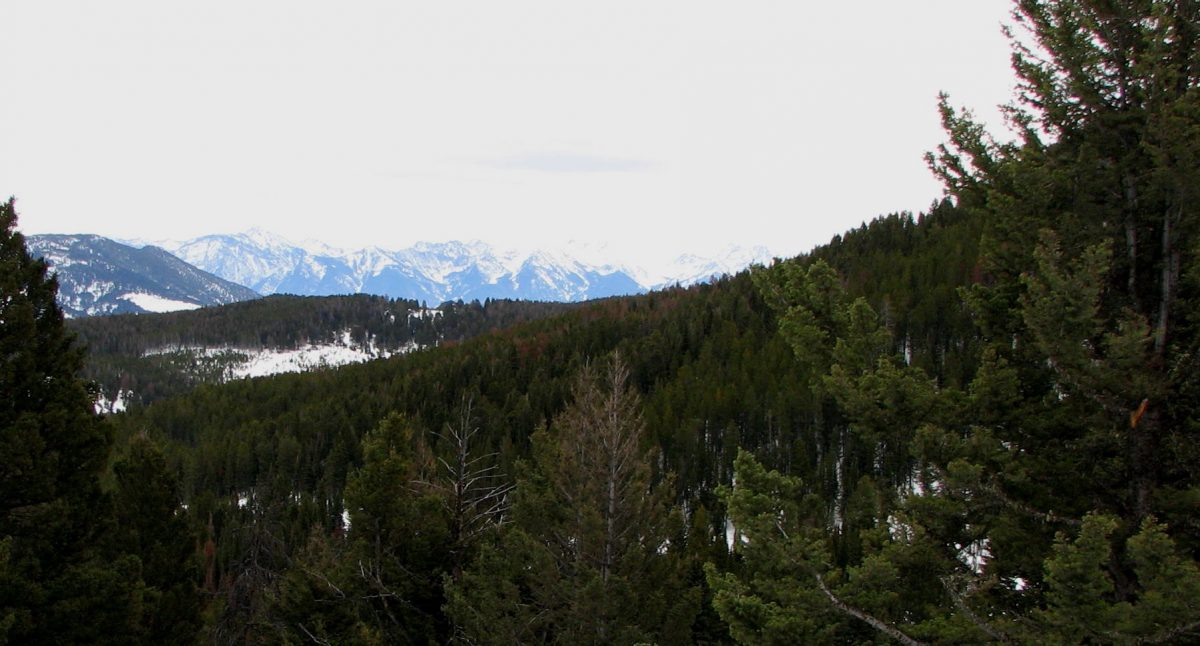 A scenic view of distant mountains taken from a winter trail in the Goose Creek area