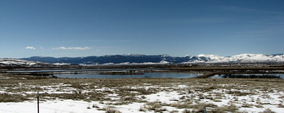 Warm Springs Wildlife Management Area landscape