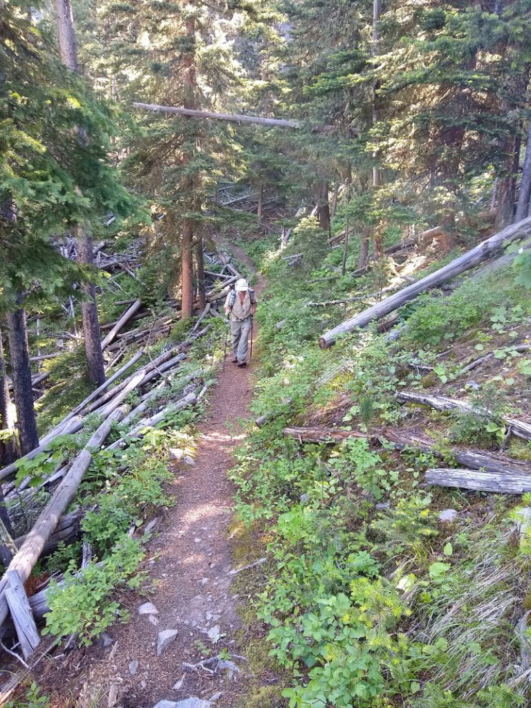 Hiker climbing the George Lake trail