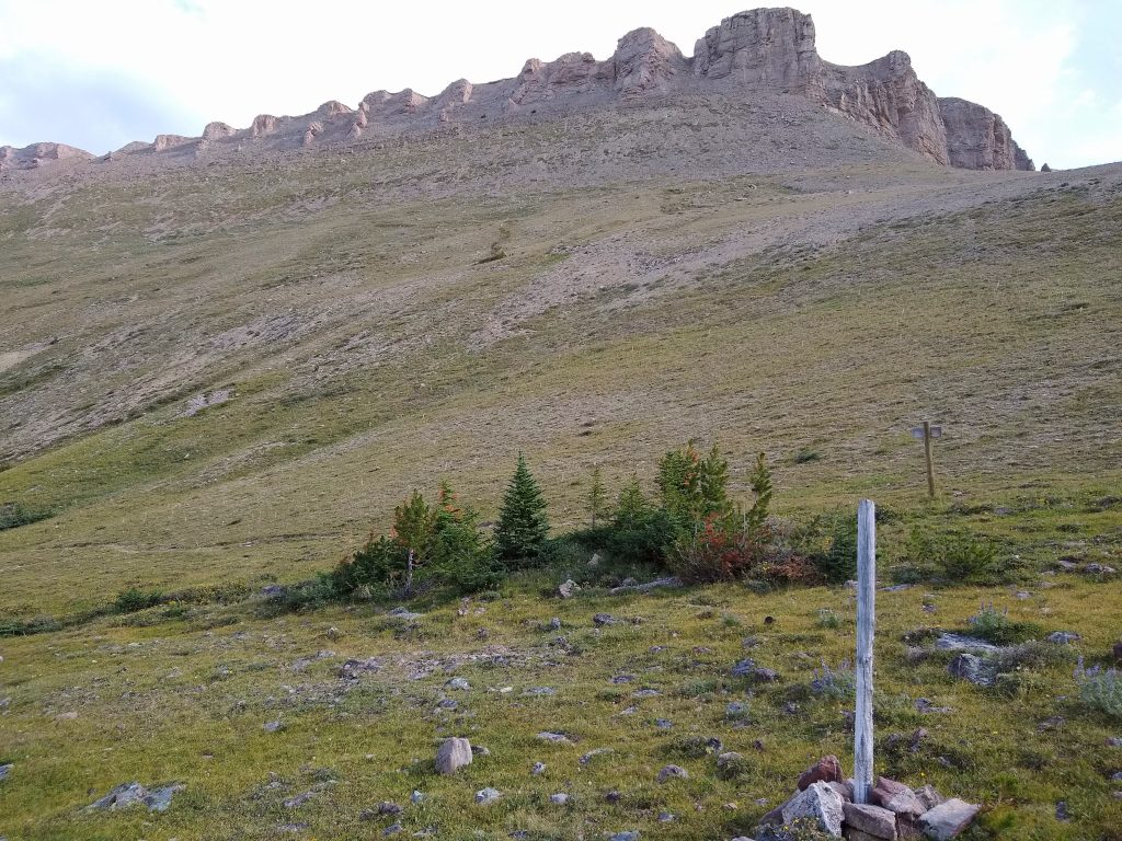 Elephanthead Mountain as seen from the trail junction