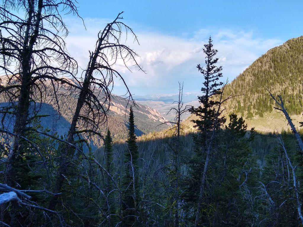 Blacktail Creek Drainage