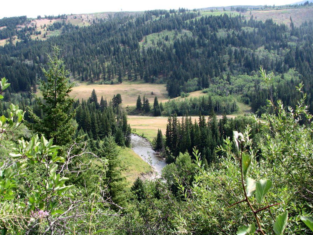 West Boulder River seen from the Davis Creek trail