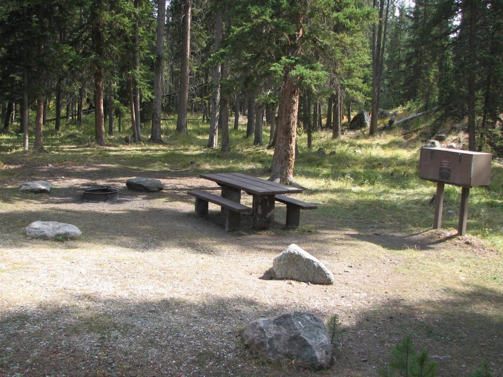 Typical campsite in Crazy Creek Campground