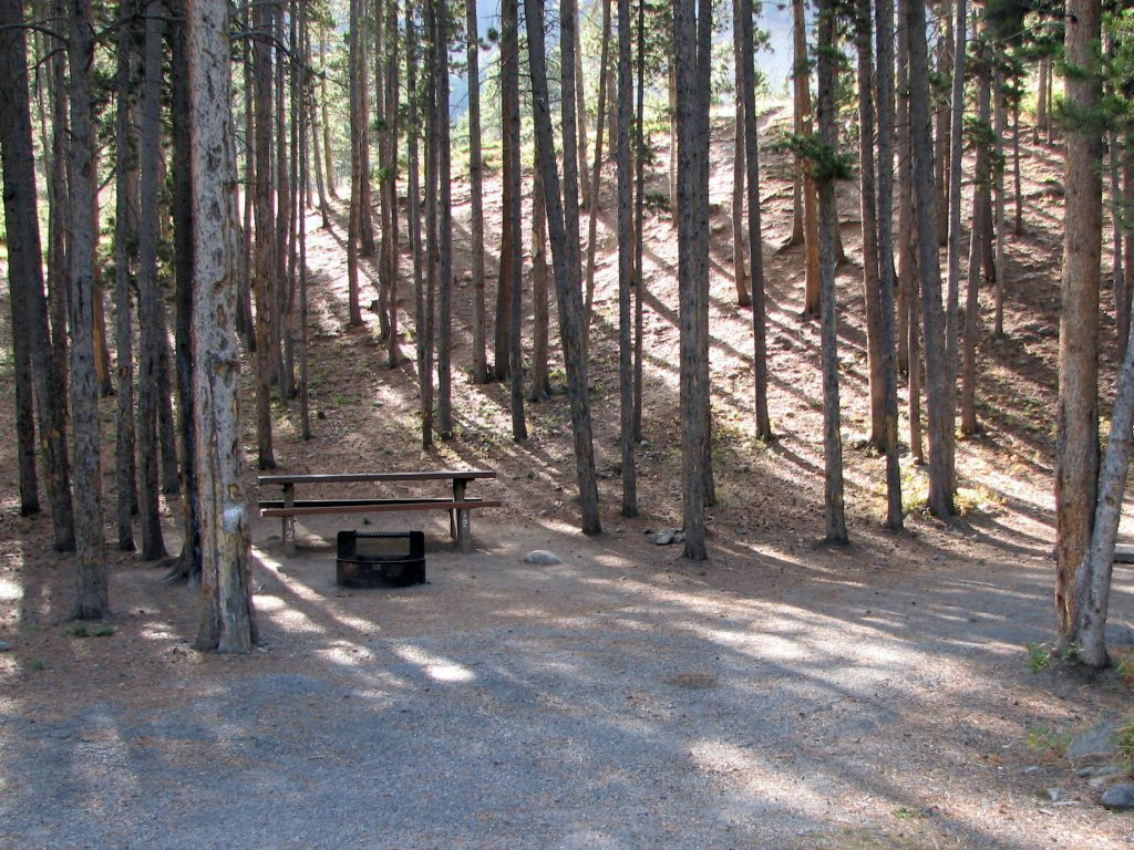 Typical Greenough Lake Campground campsite