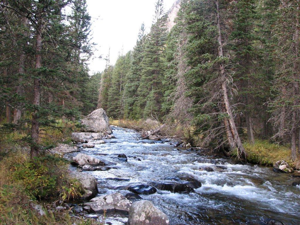 ROck Creek near Red Lodge. MT