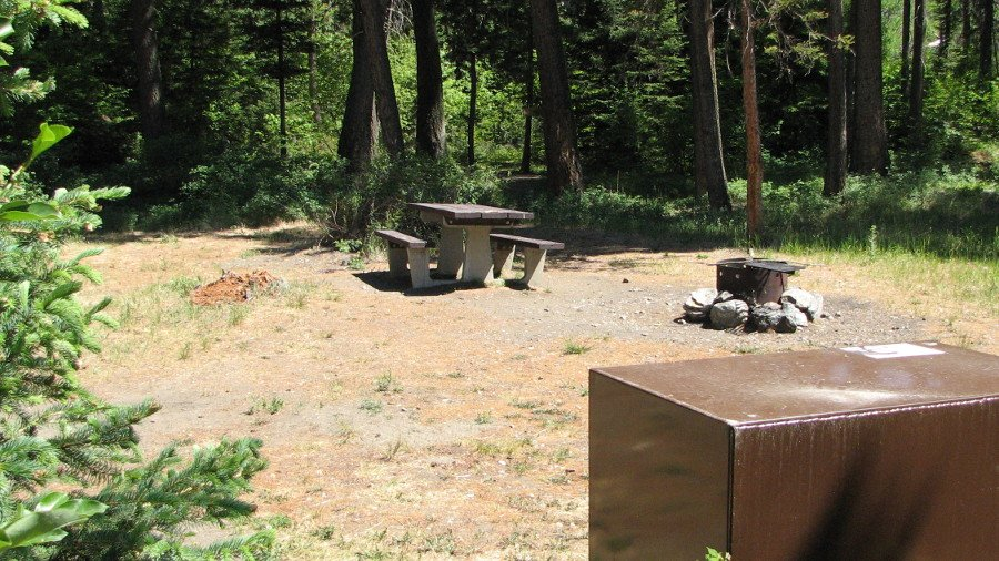 Photo of typical campsite in Pine Creek Campground