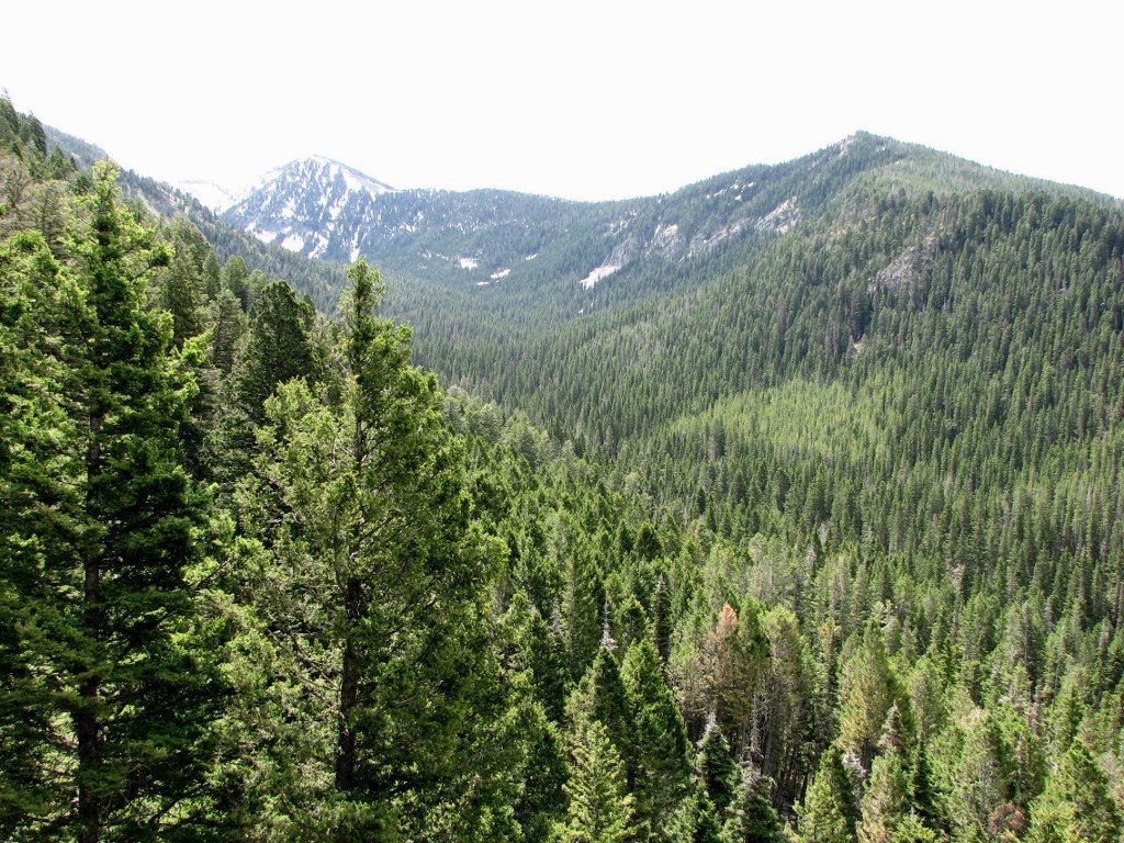 Scenic photo of the Crazy Mountains above the Porcupine Ibex trail